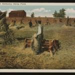 Hemp-farm