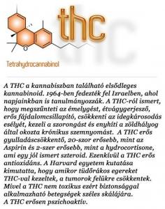 kannabinoidok (1)