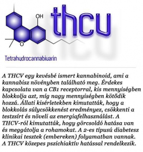 kannabinoidok (2)