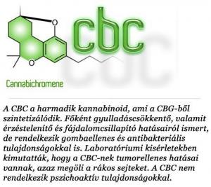 kannabinoidok (4)