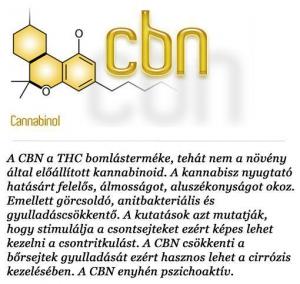 kannabinoidok (5)