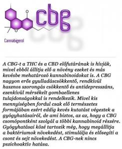 kannabinoidok (6)