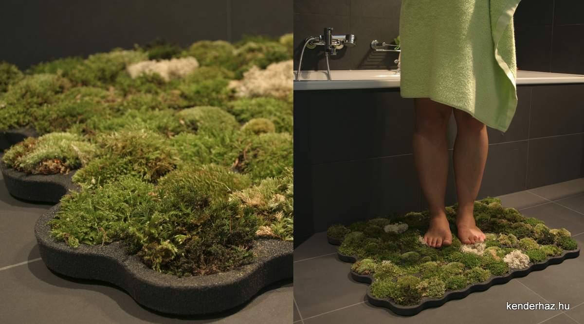 Как в домашних условиях сделать стабилизированные растения